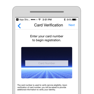 Screen for debit card number